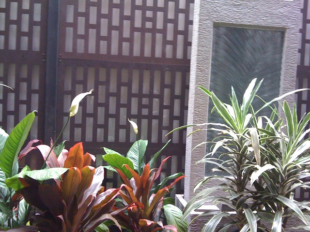 Small courtyard garden asian melbourne by bespoke for Courtyard landscaping melbourne
