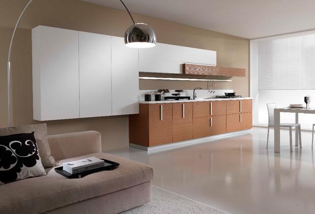 CONTEMPORARY KITCHEN DESIGN PEDINI SAN DIEGO contemporary-kitchen-cabinets