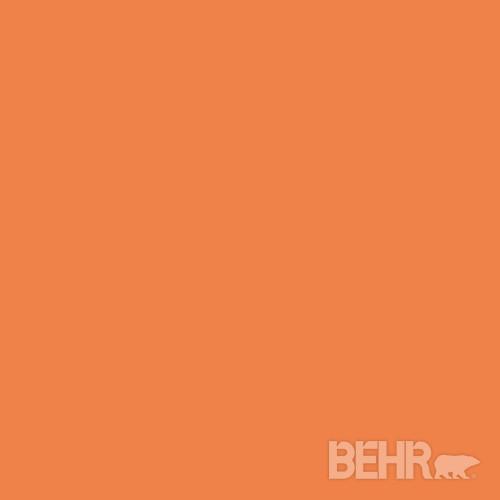 BEHR® Paint Color Orange Zest 240B-6 - Modern - Paint - by BEHR®