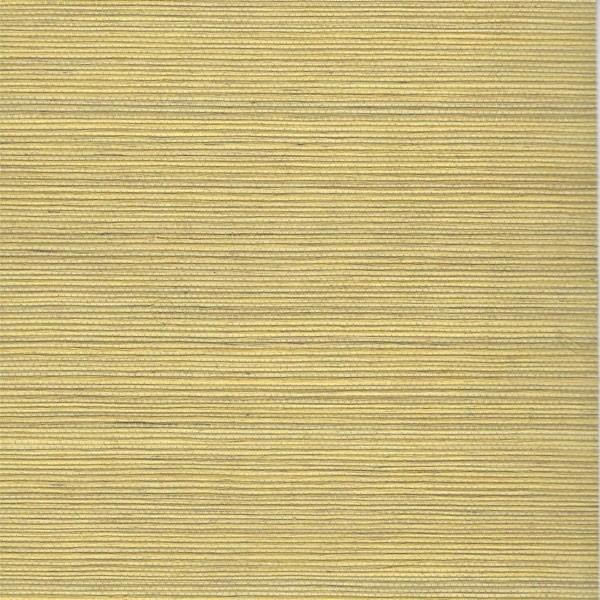 Grasscloth Wallpaper Samples: Duo Sisal Buff Grass Cloth Wallpaper, Sample