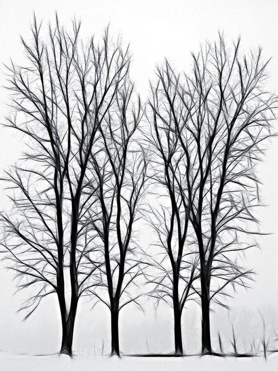 Foggy Morning Landscape Fractal 2 -