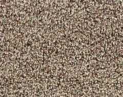 Wall To Wall Carpets What Is The Best Neutral