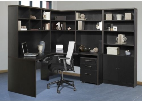 The Ergo Office Crescent Desk with Hutch and Bookcase traditional-desks