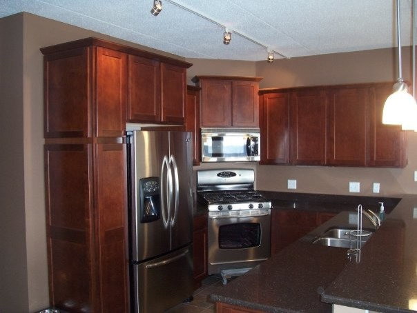 Past jobs modern kitchen cabinetry chicago by for Kitchen cabinets jobs