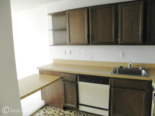 Need Help in Kitchen Upgrade