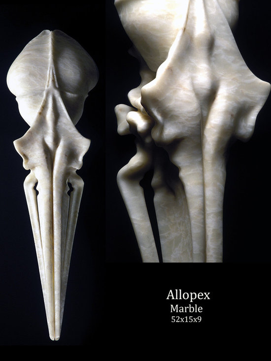 Allopex - All photos by the artist
