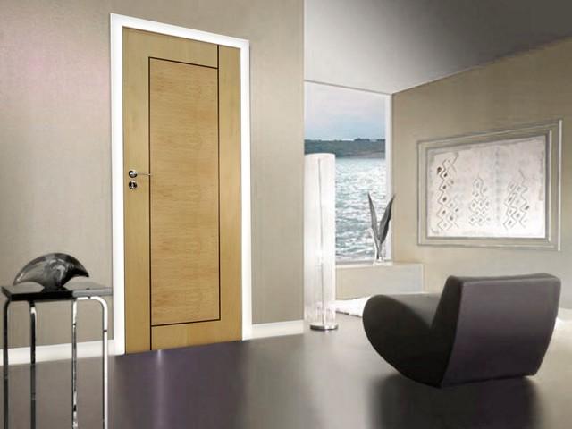 Italian doors modern interior doors other metro by dayoris doors panels Interior doors cincinnati