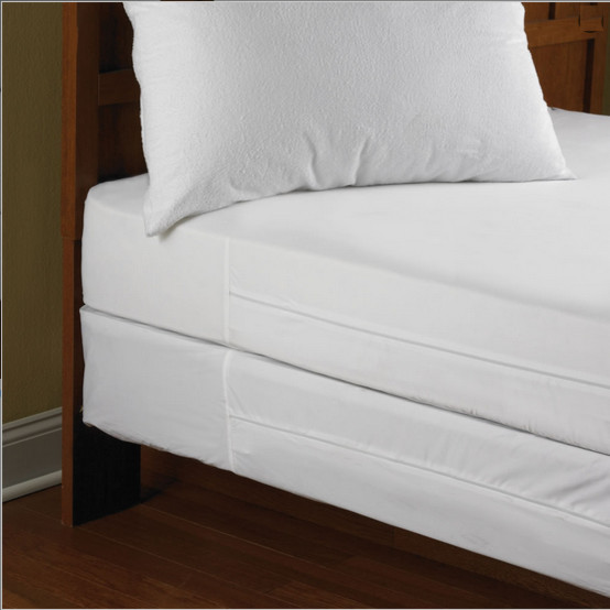 Mattress covers to prevent bed bugs review