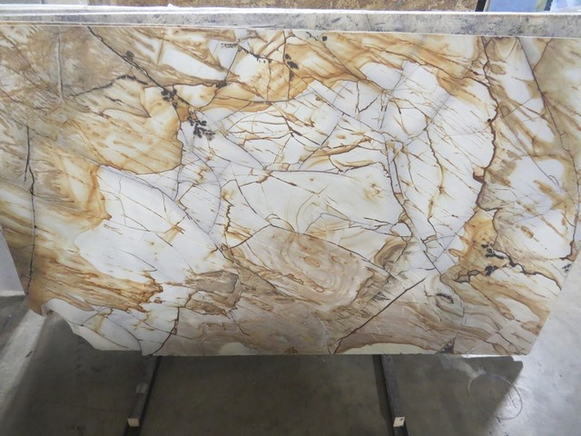Roma Imperiale Quartzite modern-kitchen-countertops