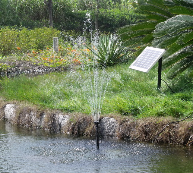 "Solar Pump and Panel Kit with 80"" Spray outdoor-fountains-and-ponds"