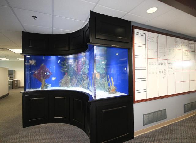 Aquarium Cabinet Kitchen Design Ideas