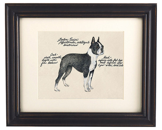Ballard Designs - Boston Terrier Dog Print - Our Boston Terrier Dog Print was created by the dog-loving, husband and wife team of Vivienne and Sponge. The Boston Terrier is known for being affectionate, intelligent and boisterous. Each Terrier portrait is hand colored and embellished with notes on the breed's special characteristics. Printed on antiqued parchment, signed by the artists and framed in antique black wood with eggshell mat and glass front. Boston Terrier Dog Print features:Hand colored & signed . Printed on parchment. Eggshell mat. Antique black frame