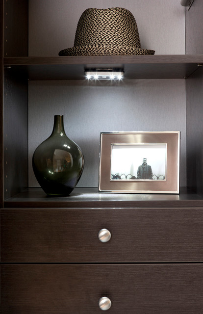 Shelf Mounted LED Lighting contemporary closet