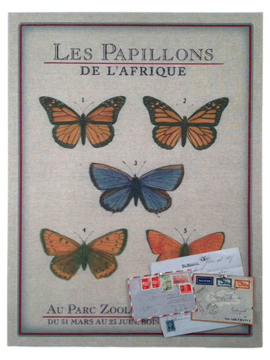 Floating Circus Zoo Butterfly Pin Board