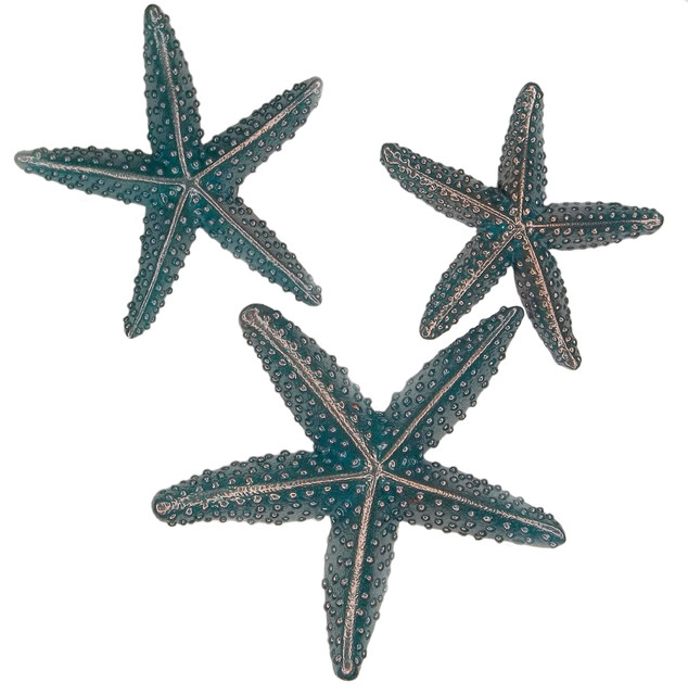 Starfish Kitchen Cabinet Knobs, - Beach Style - orlando - by Sea Life Cabinet Knobs by Peter ...
