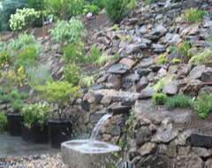 How to harvest rainwater for your garden for Design of water harvesting pond