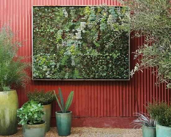 Vertical Succulent Garden, DIY Panel -
