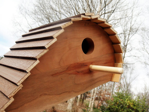 Unique Ready-to-Paint Wood Birdhouse by Wood Dork - Contemporary ...