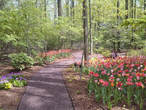7 Of The Coolest Landscape Designs In Washington Dc