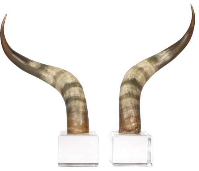 Steer Horn Bookends eclectic-bookends