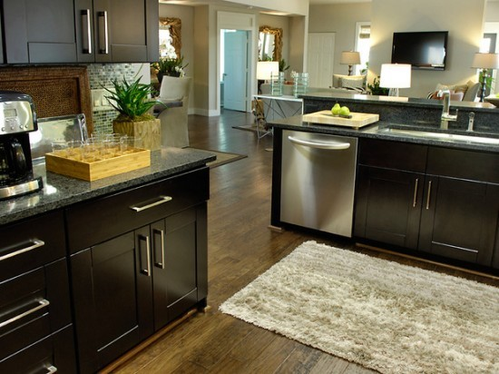 Espresso - kitchen cabinets - orlando - by Golden Hammer Cabinet ...
