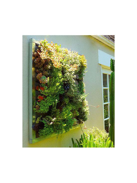 FLORAFRAME Living Wall Kit -