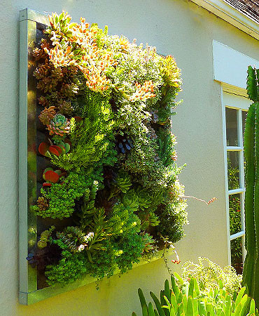 Floraframe living wall kit modern outdoor pots and for Living plant walls