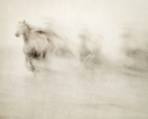 Abstract Horse Photograph by Irene Suchocki contemporary artwork
