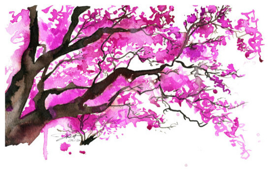Watercolor japanese cherry blossom tree by jessica durrant for Simple cherry blossom painting