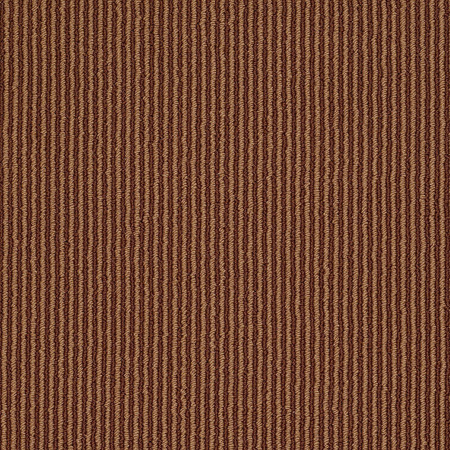Sisal Appeal Carpet, Brick Path - Contemporary - Area Rugs - by Shaw Floors