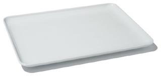 Alessi Programma 8 Dinner Plate - Rectangular modern-plates