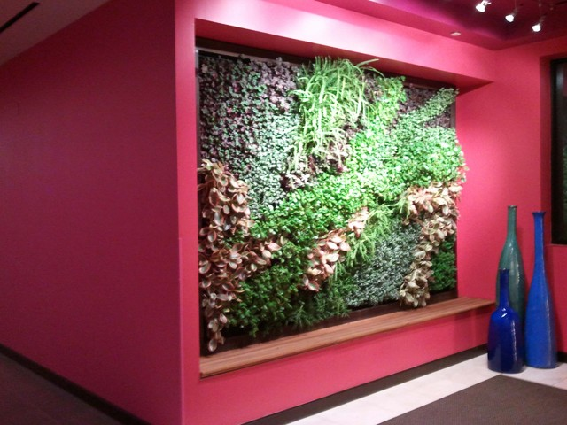 Indoor Living Wall contemporary-swimming-pools-and-spas