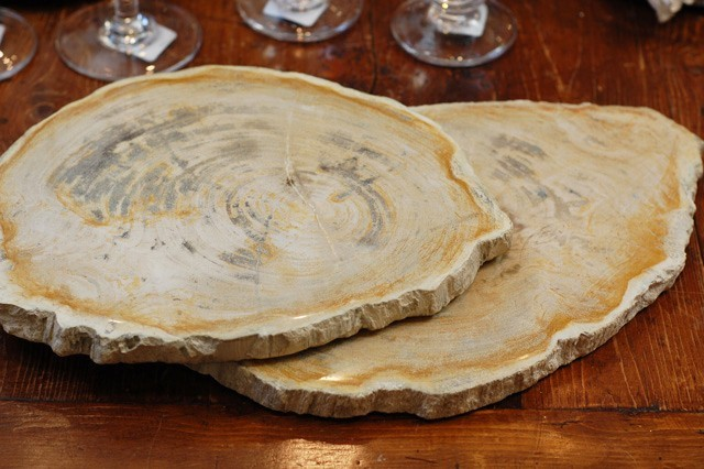 Petrified Wood Cheese Tray Eclectic Serving Dishes And