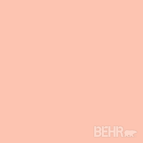 BEHR174 Paint Color Malibu Peach 210A 3 Modern Paint  : modern paints stains and glazes from www.houzz.com size 500 x 500 jpeg 9kB