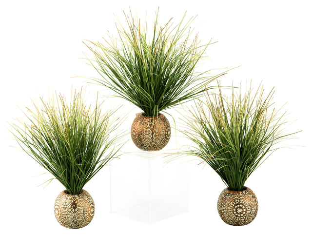 D w silks green brown onion grass in planter set of for Indoor decorative live plants