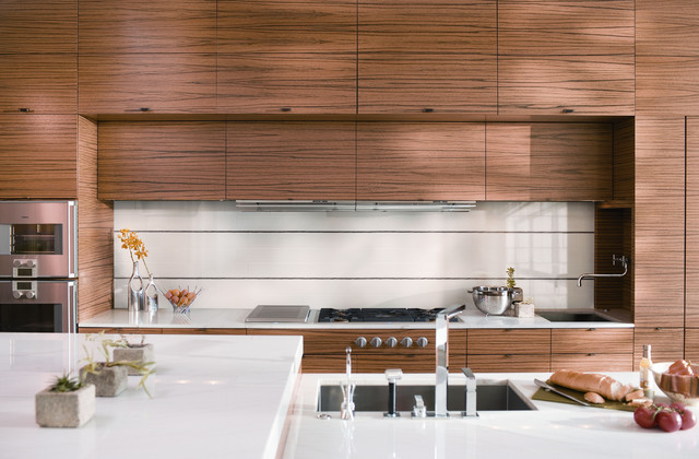 Kitchen Tile Trends Photography - Coverings Preview contemporary
