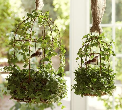 Live Ivy Bird Cage contemporary indoor pots and planters