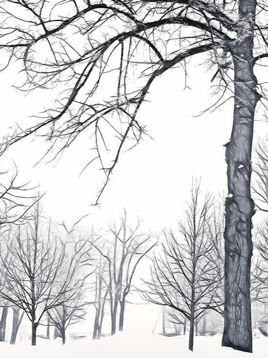 Foggy Morning Landscape - Fractalius 6 -
