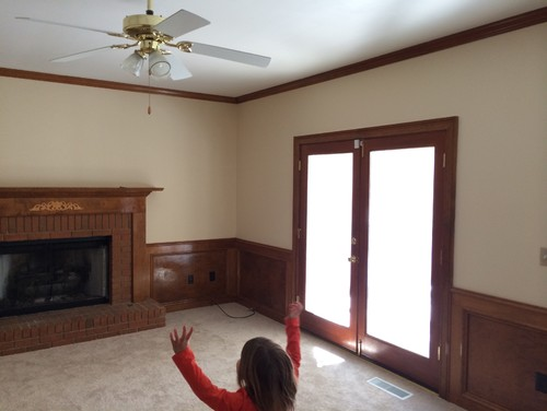 Need Help With Wall And Wainscoting Color