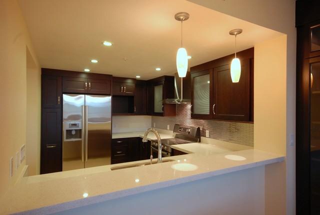 Mountain View Contemporary Kitchen contemporary