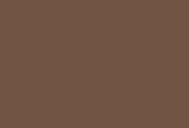 sw6068 brevity brown sherwin williams paint by