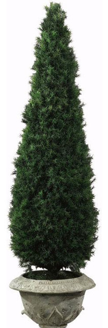 Springray Obelisk Topiary indoor-pots-and-planters