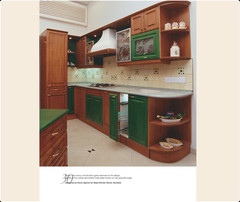 FEVICOL FURNITURE BOOK - Kitchen Designs