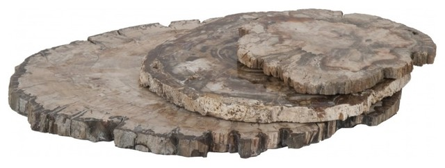 Petrified Wood Trays eclectic serveware