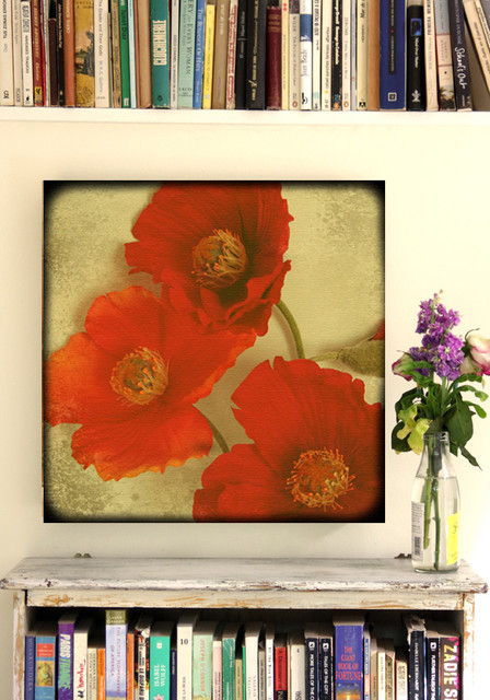 Poppy Flower Canvas 20 x20 eclectic living room