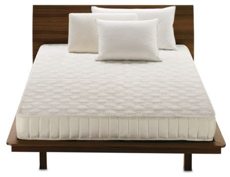 Sonno Prima Medium Mattress | Design Within Reach - modern - beds