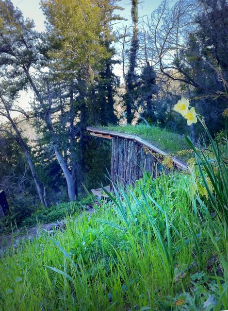 Overlook House rustic