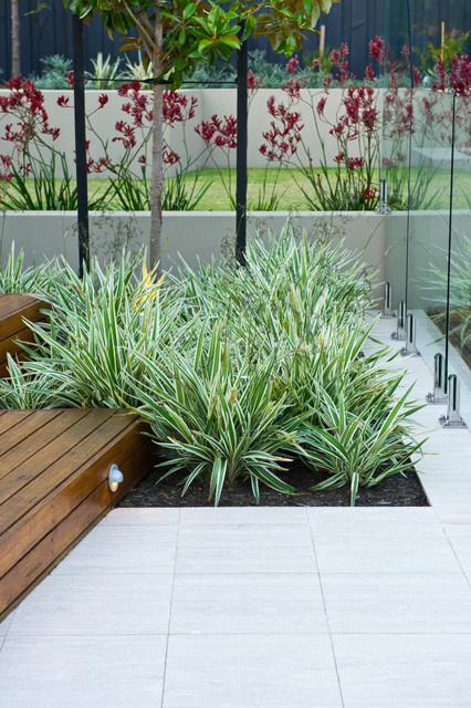 Contemporary landscape design by other metro landscape architect  426 x 640