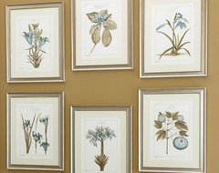 Buchoz Botanical Antique Prints traditional-prints-and-posters