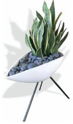 The Boat Planter modern-indoor-pots-and-planters